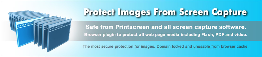 Copy Protect Images with Image Encryption and Domain Lock